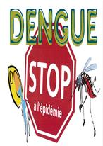 Attention !! Epidémie de dengue en Nouvelle-Calédonie